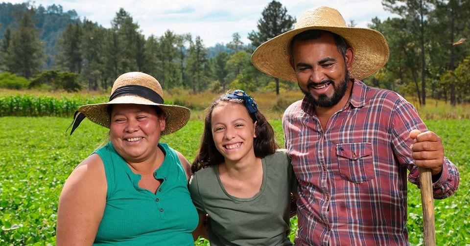 Olagro.org primera plataforma hondureña de productos agrícolas