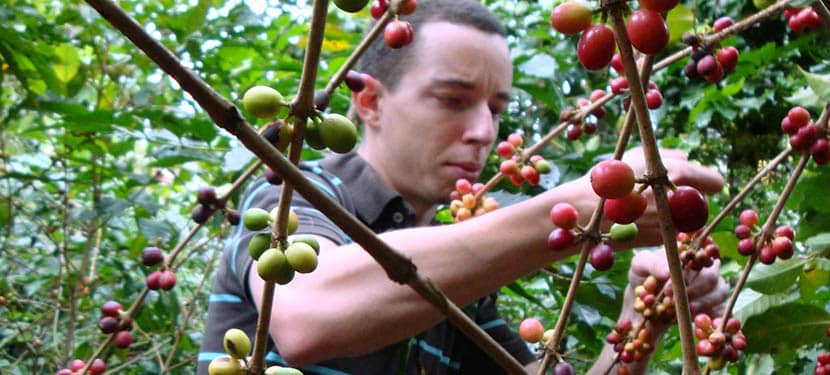 Philippe Dentan exporta café de Marcala, Honduras a Suiza
