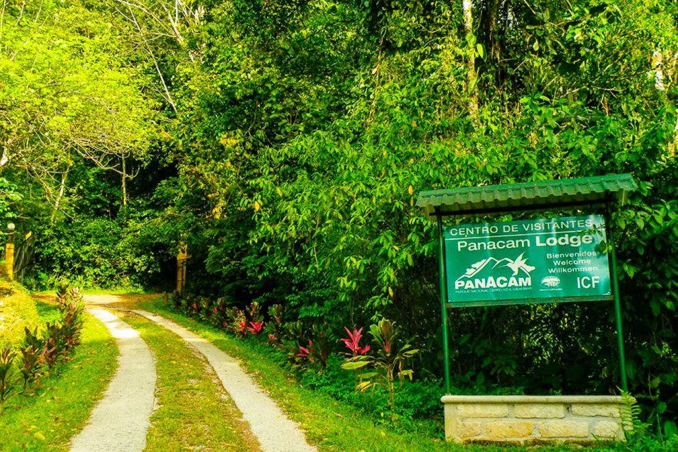 Colibríes ayudan a recuperar el turismo en Honduras