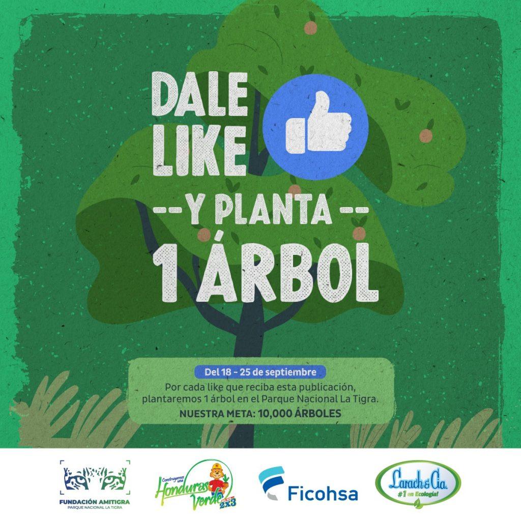 Banco Ficohsa y Larach & Cia, crearon un  proyecto de reforestación en La Tigra
