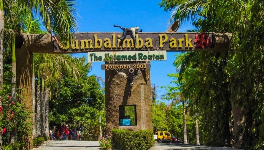 Excursión a Gumbalimba Park, una aventura exótica en Roatán