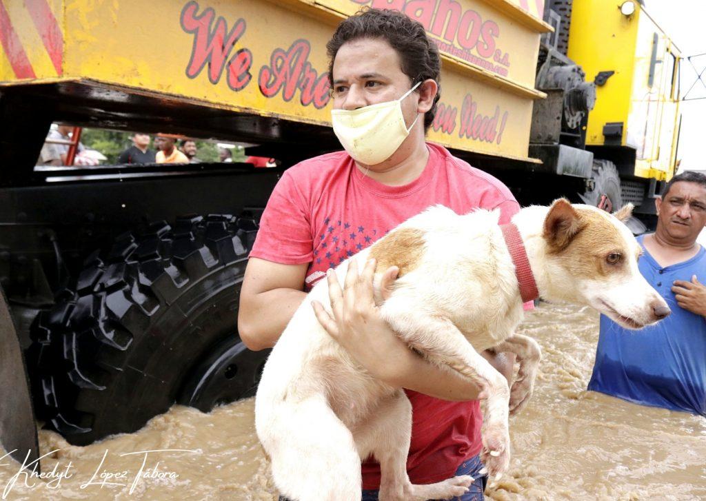 Hondureños rescatan animales durante depresión tropical ETA
