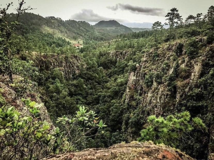 Refugio de Vida Silvestre Corralitos, Francisco Morazán