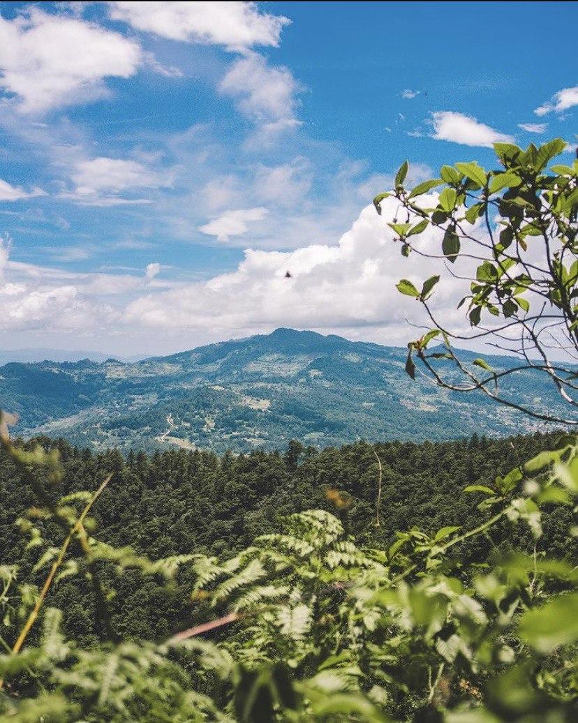 Reserva biológica Uyuca, Francisco Morazán