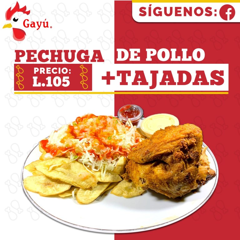 Hondureño Alex Villamil destaca con restaurante Gayú