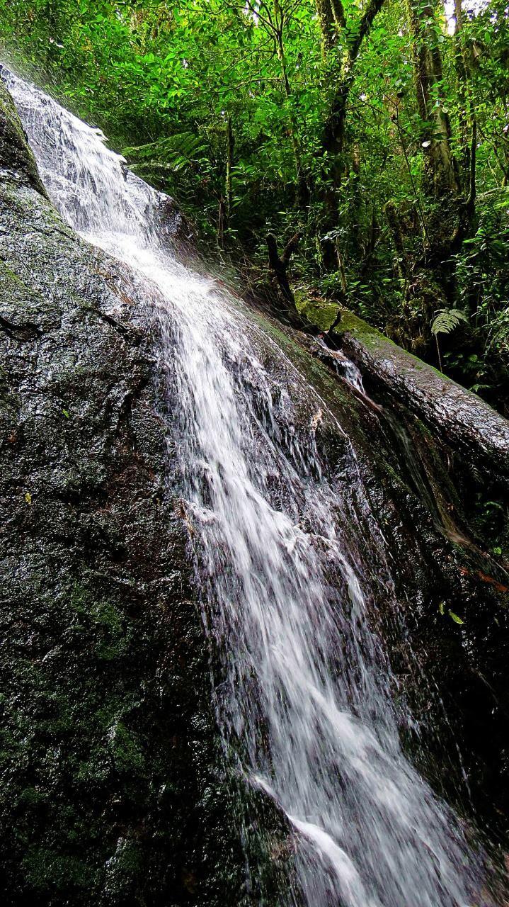 Reserva Biológica Misoco, Francisco Morazán
