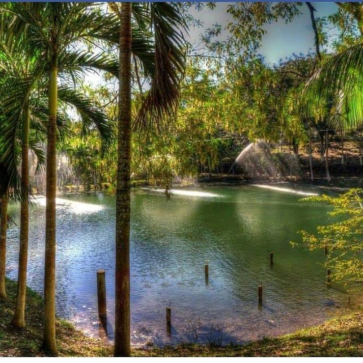 Parque Eco-turístico «El Ocote», tiene hermosas cabañas en medio del bosque