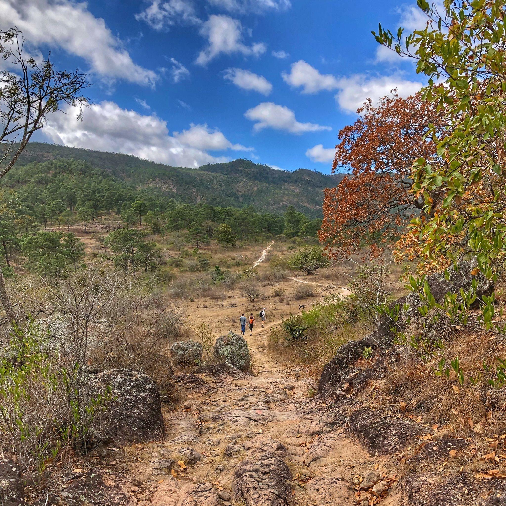 Cerro La Mesa, una actividad para disfrutar de la naturaleza