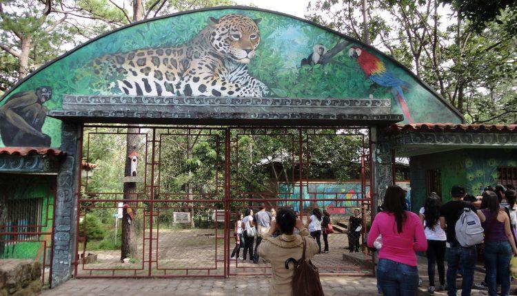 Zoológico El Picacho reabre sus puertas en Honduras