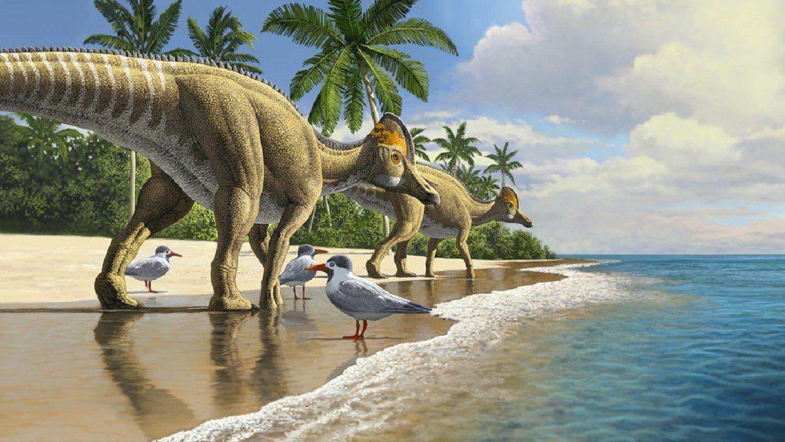 Datos curiosos sobre dinosaurios en Honduras