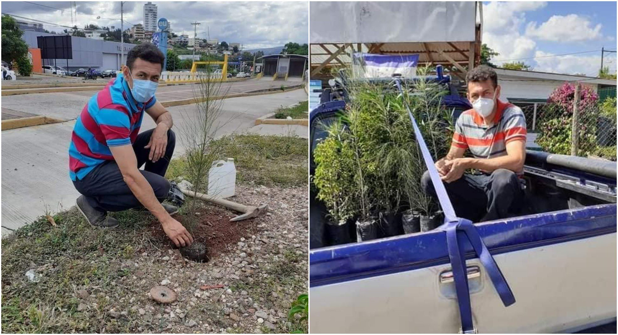 Hondureño siembra árboles con su dinero en Tegucigalpa
