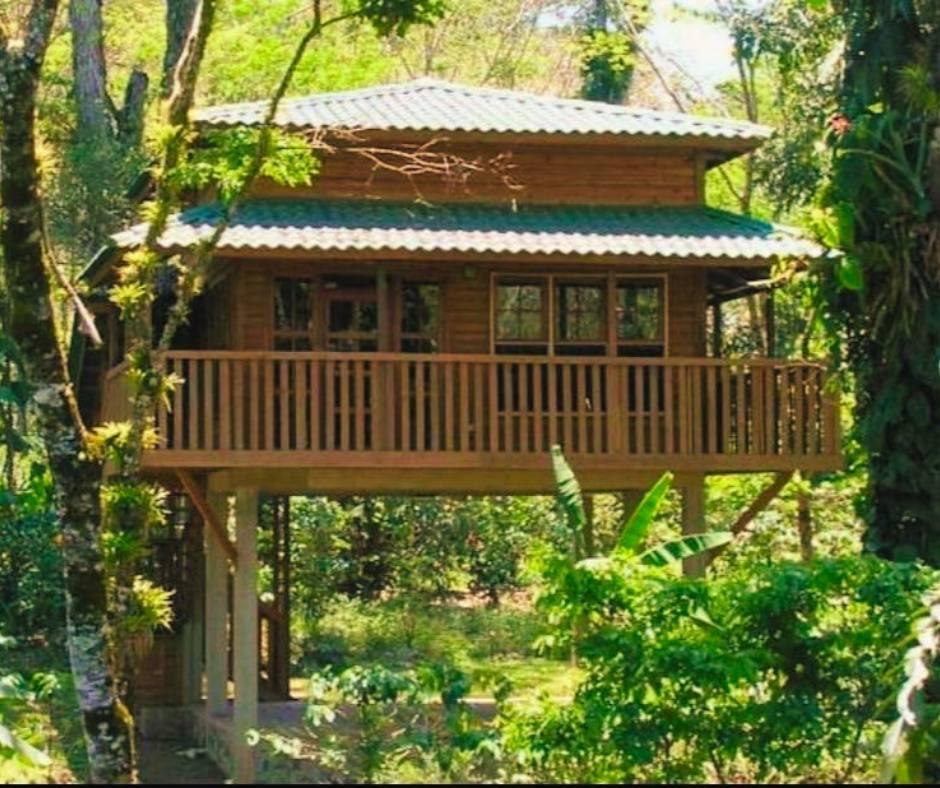 Bio-parque Paradise, Los Naranjos