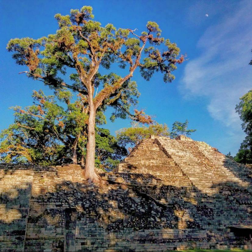 Datos curiosos sobre el arte de la Civilización Maya