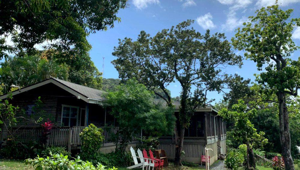 Pirate's Den, el hotel rodeado de naturaleza en la isla de Roatán
