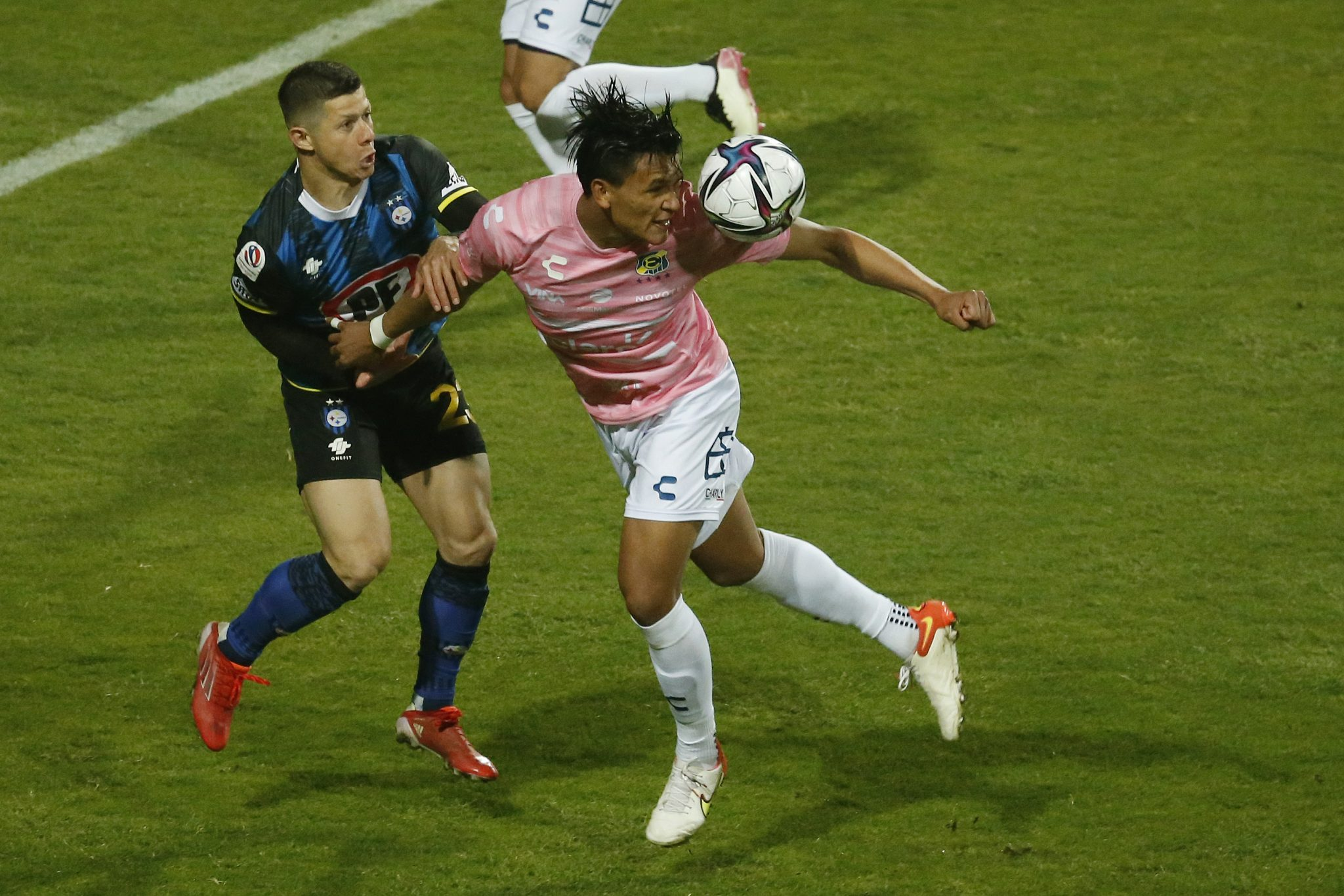 Denil Maldonado realiza enorme gesto con seguidor del Everton de Chile